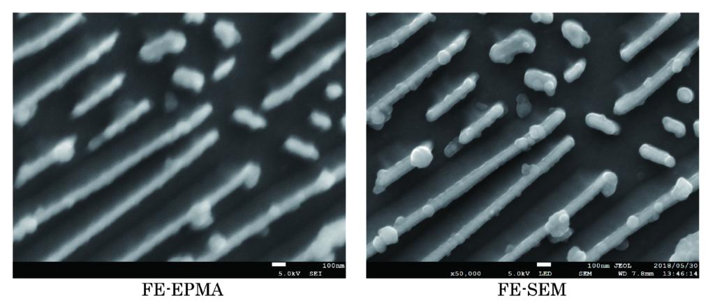 FE-EPMA と FE-SEM の二次電子像 (5kv、50,000 倍 ) 比較