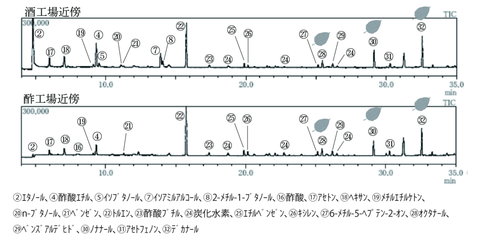 環境大気のTD-GC/MSトータルイオンクロマトグラム